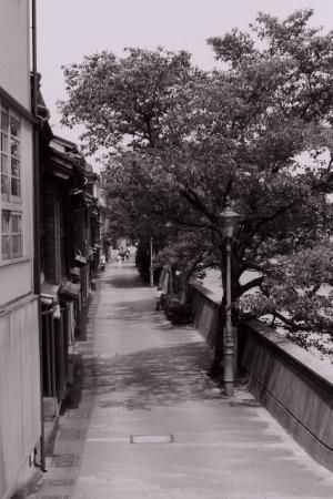 浅野川沿い