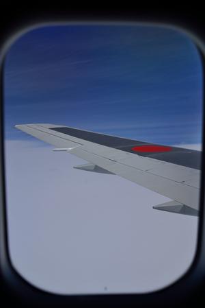 翼の上の青空