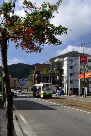 青空と函館山と電車