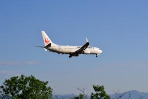 JAL B737-846